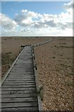 TR0916 : Dungeness, The Beach by Mark Collins