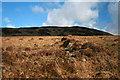 NR3847 : Cnoc an Eireachdais, Islay by Becky Williamson