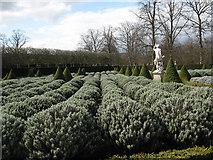 TQ1773 : Ham House: lavender beds by Stephen Craven