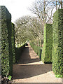 TQ1773 : Ham House: avenue alongside the Cherry Garden by Stephen Craven