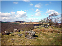 SK2773 : Boulders and birches, Gardom's Edge by Karl and Ali