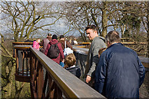 TQ1876 : Xstrata Treetop Walkway by Martin Addison