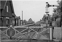 TQ2151 : Betchworth Station by Ben Brooksbank