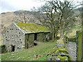 NY5012 : Farm buildings, Swindale Head by David Brown
