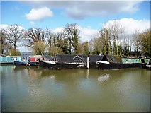 ST9961 : Moorings on the Kennet and Avon canal by Christine Johnstone