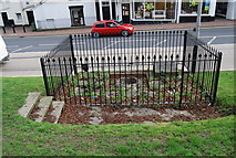 TQ5838 : A Chalybeate Spring, Tunbridge Wells Common by N Chadwick