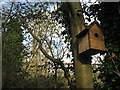 TL4556 : Nesting box #13 by Given Up