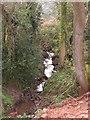 ST5357 : Stream near Ubley by Michael Cobb
