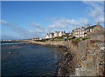 NT4999 : Elie - the sea wall by John Allan