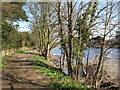 NY9864 : The River Tyne and footpath east of Corbridge Mill by Mike Quinn