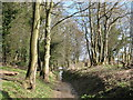 NY9864 : Footpath east of Corbridge Mill by Mike Quinn