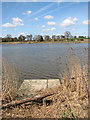 TM3899 : Fishing spot by Hardley Flood by Evelyn Simak