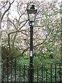 TL4457 : Burning gas lamp by Sandy B