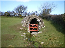 SM9836 : Llanllawer Holy Well and the issuing stream by Richard Law