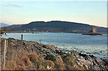 NM9247 : Coastal fence and Castle Stalker by Steven Brown