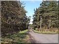 NZ1975 : Driveway to Old Horton Grange by Oliver Dixon