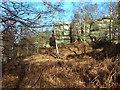 TQ5535 : Sandstone Rocks at Eridge Green by M Etherington