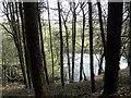 SE0321 : Mill Dam near Foxen Lane seen from the Calderdale Way by Michael Steele