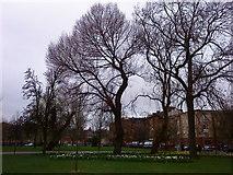 NS5964 : Glasgow Green (Near High Court) by Bertie Broomfield
