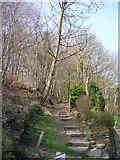 SE1039 : Steps near Ireland Terrace - Harden Road by Betty Longbottom