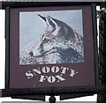 SD6178 : Sign for the Snooty Fox by Maigheach-gheal