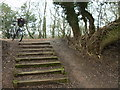 TL1896 : Steps in nature reserve by Andrew