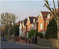 TQ2374 : Houses on St Simon's Avenue, Putney by Derek Harper