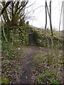 SE0324 : Footpath and steps off Spring View Road, east side of bridge by Alexander P Kapp