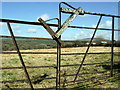 SM9828 : Field and gate near Colston by ceridwen