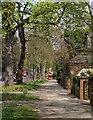 TQ1876 : Kew Road by Derek Harper