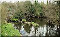 J2766 : The River Lagan at Lambeg by Albert Bridge