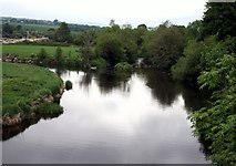 S8959 : River Slaney, County Wexford, County Carlow by Sarah777