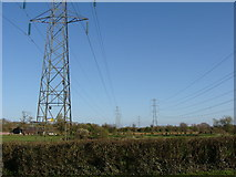 ST0209 : Parallel pylons, near Willand by Ruth Sharville
