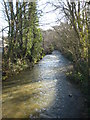 SW9348 : The River Fal above the bridge at Grampound by Rod Allday