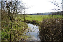 TQ5203 : Small channel by the River Cuckmere by N Chadwick