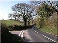 SX8561 : Junction near Widend Touring Park by Derek Harper