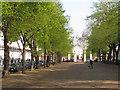 TQ2778 : Royal Avenue, SW3 by Robin Stott