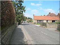 SK5451 : Main Street, Papplewick by JThomas