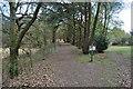 TM4674 : Large Embankment by Ashley Dace