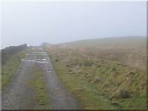 NY5775 : The track to Crossgreens near The Pike by Mike Quinn