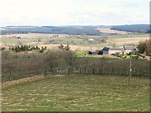 NY5675 : Pastures and woodland south of Parknook by Mike Quinn