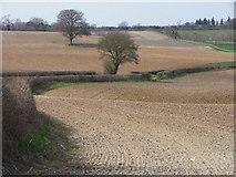 SU4659 : Farmland, Burghclere by Andrew Smith