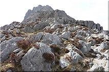 SH6659 : Upper North Ridge, Tryfan by Ivan Hall