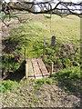 TM3667 : Footbridge between fields by Adrian Cable