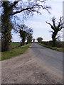 TM3666 : Kelsale Road, Kelsale by Adrian Cable