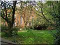 SJ9097 : God's Acre and Moravian Church by David Dixon
