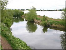 SP1853 : River Avon from Stannals Bridge, Greenway by David P Howard