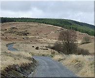 SN8056 : Cwm Tywi near Dolgoch, Ceredigion by Roger  Kidd