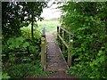 SP1953 : Footbridge on Monarch's Way footpath by David P Howard