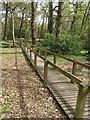 SZ0196 : Walkway, Poole Crematorium by Derek Harper